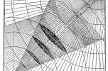 Vitruvius perspektíva-ábrája a Tíz könyv az építészetről c. munkából