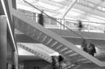 Mathematical Institute, Fotó © Will Pryce, a Rafael Viñoly Architects szívességéből