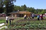 Howard S. Wright Neighborhood Design-Build Studio: Növényház és közösségi tér, Seattle, 2012